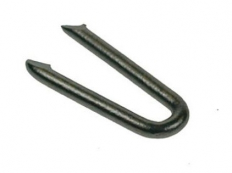 Staples Galvanised Wire nail 1/2kg Pre-Packed 20mm