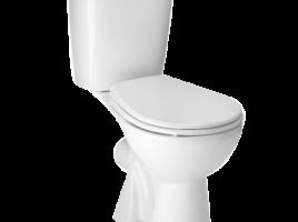 Ordinary toilet